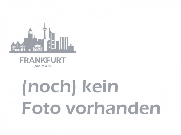 Frankfurt Intercontinental Hotel